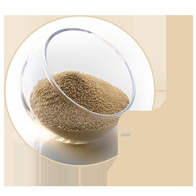picto nutrition canine et féline